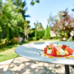 Jardin et dessert pamplemousse basilic