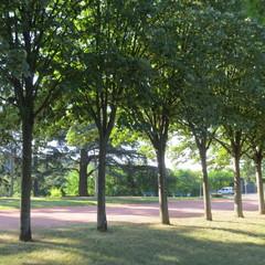Parc du château de Rochetaillée
