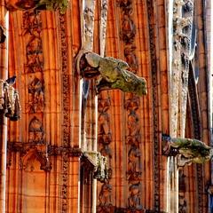 Gargouilles - Cathédrale Saint-Jean