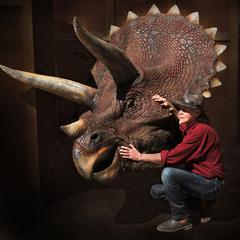 Le triceratops de Jurassic Park