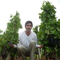La cave des vins magnifiques